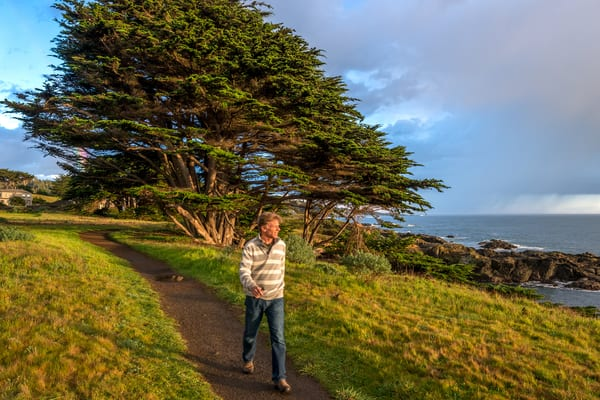 Few People Know the Marvelous Benefits of Walking Sea Ranch Trails