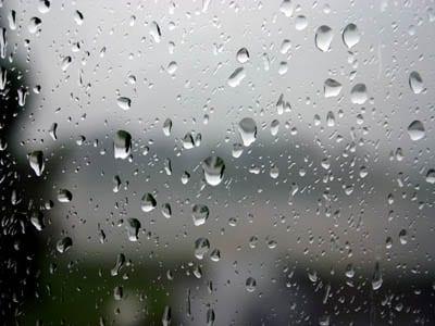 11 Rainy Day Activities at Sea Ranch Abalone Bay Vacation Rental