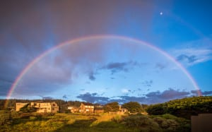 walking Sea Ranch trails,Sea Ranch trails, kid friendly , vacation rental, sea ranch, abalone bay, rainbow