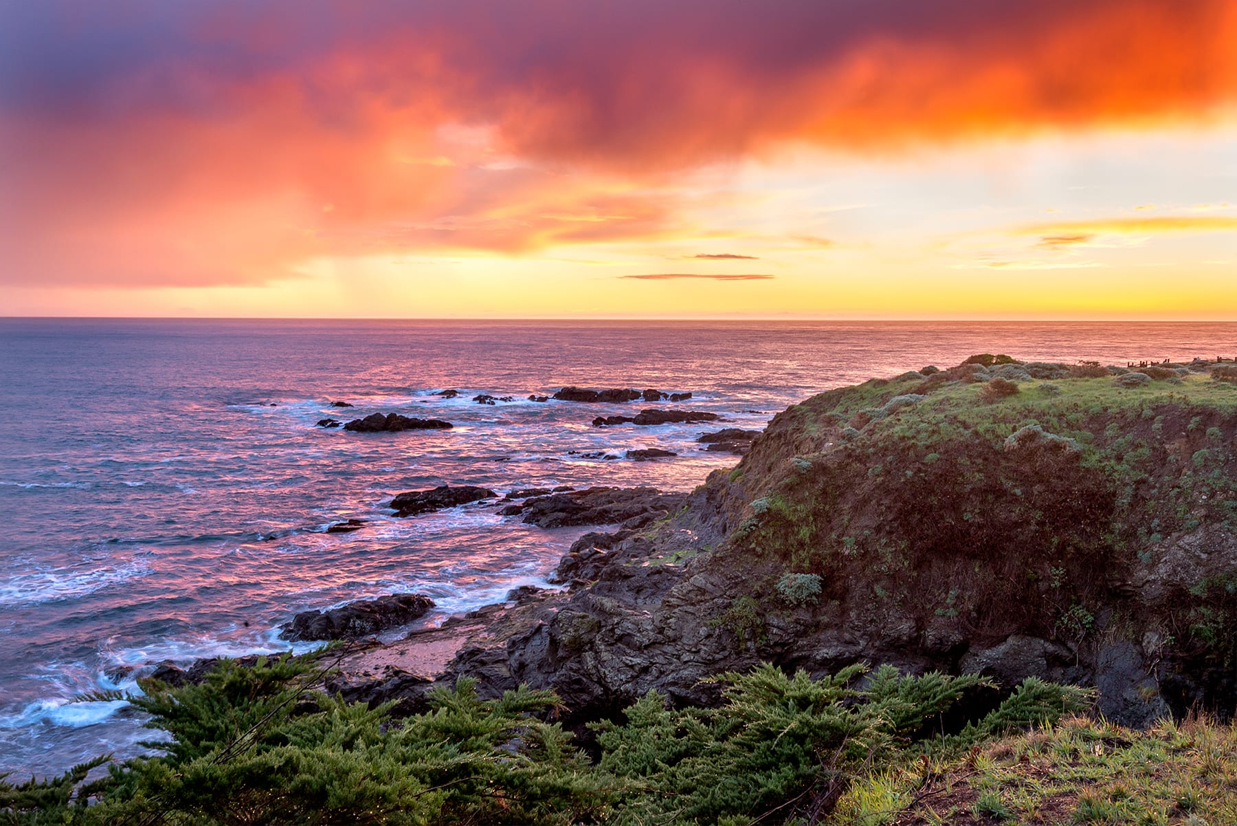 The Perfect Writers Retreat : Sea Ranch Abalone Bay