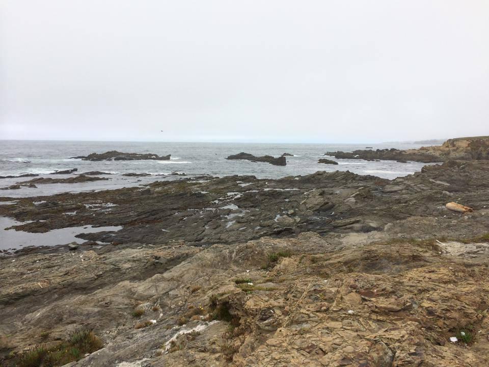 sea ranch tide pools, sea ranch , tide pools, vacation rental, abalalone bay, oceanfront