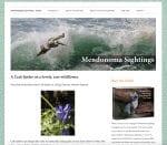 Mendonoma Sightings,Mendonoma Blogs, Sea Ranch Blogs, Sea Ranch, Vacation Rental, Jeanne Jackson,Abalone Bay