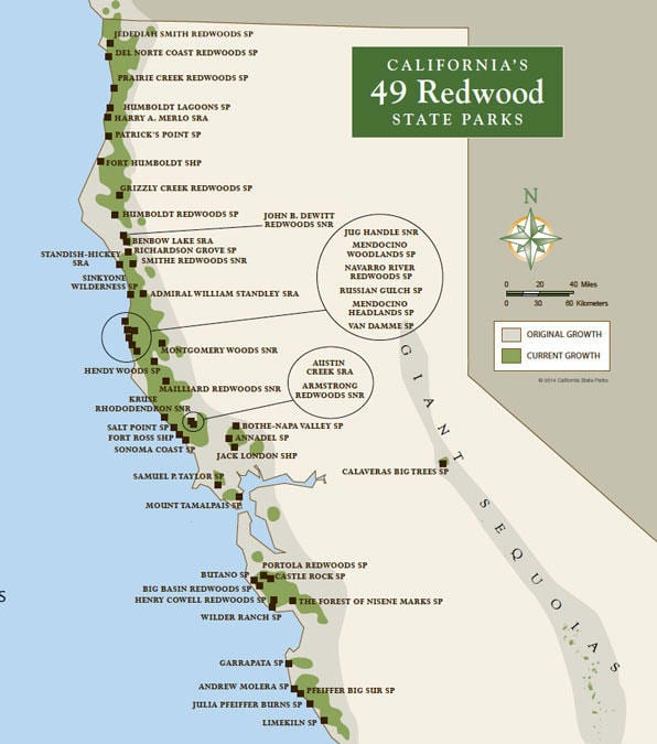 49 California Redwood Parks Free on Black Friday