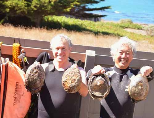 Trophy Abalone Diving at Sea Ranch and Mendonoma Area