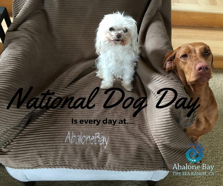 National Dog Day, Abalone Bay, Sea Ranch, Vacation Rental