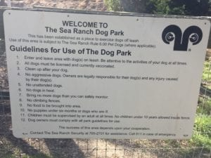 dog day, Sea Ranch, Dog Park