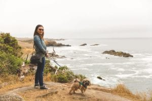 Dog Day, Sea Ranch,