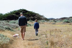 Dog Day, Sea Ranch, visit sea ranch