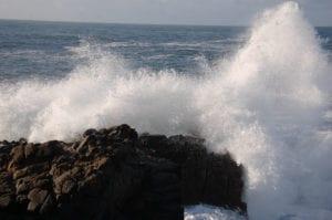 Christmas season , Sea Ranch, Abalone Bay, vacation, vacation rental, family , dog friendly,
