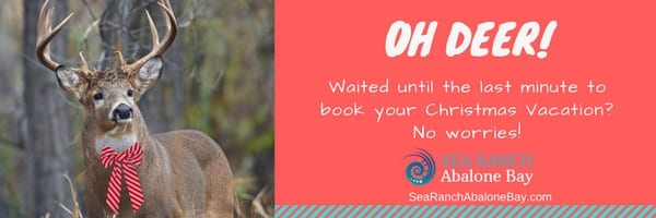 sea ranch , sea ranch abalone bay, vacation rentals, sea ranch vacation rentals abalone bay, sea ranch rentals,