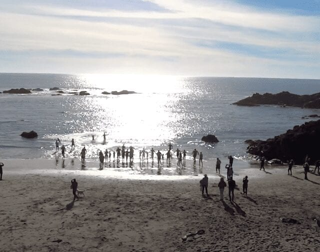 Sea Ranch New Years Day