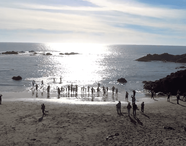Polar Bear Plungers Welcome the New Year at The Sea Ranch