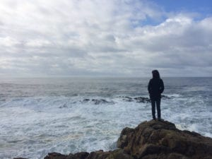 discover sea ranch