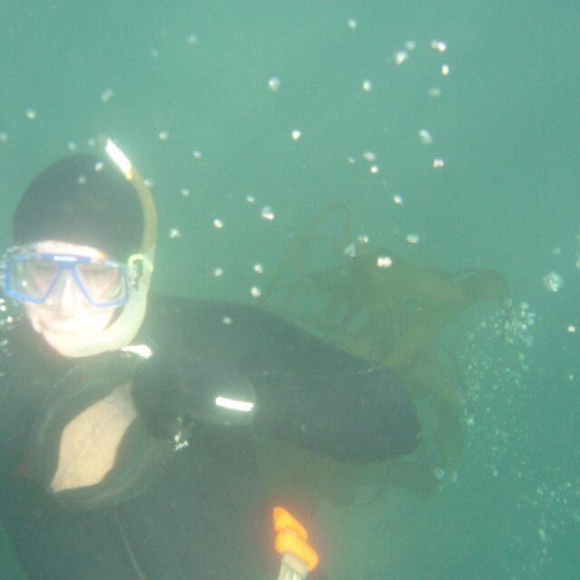 free diver in wetsuit with abalone